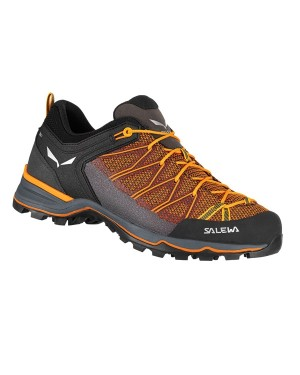 Salewa Mountain Trainer Lite